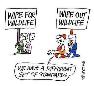 Tandberg Cartoon